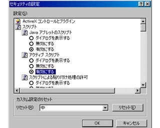 Internet Explorer 6 › インターネットオプション › アクティブスクリプトを有効にする
